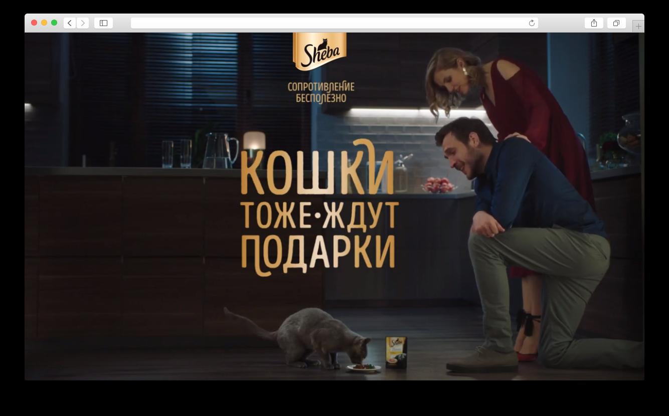 Sheba рекламный ролик на 14 февраля